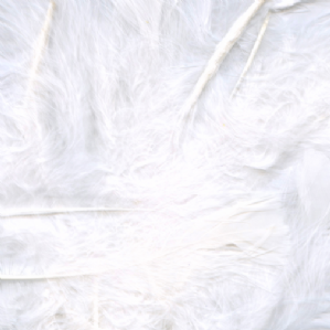 White Feathers for Balloons - Eleganza 50g Bag